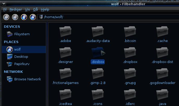 DosBox Generic Guide | GamersOnLinux