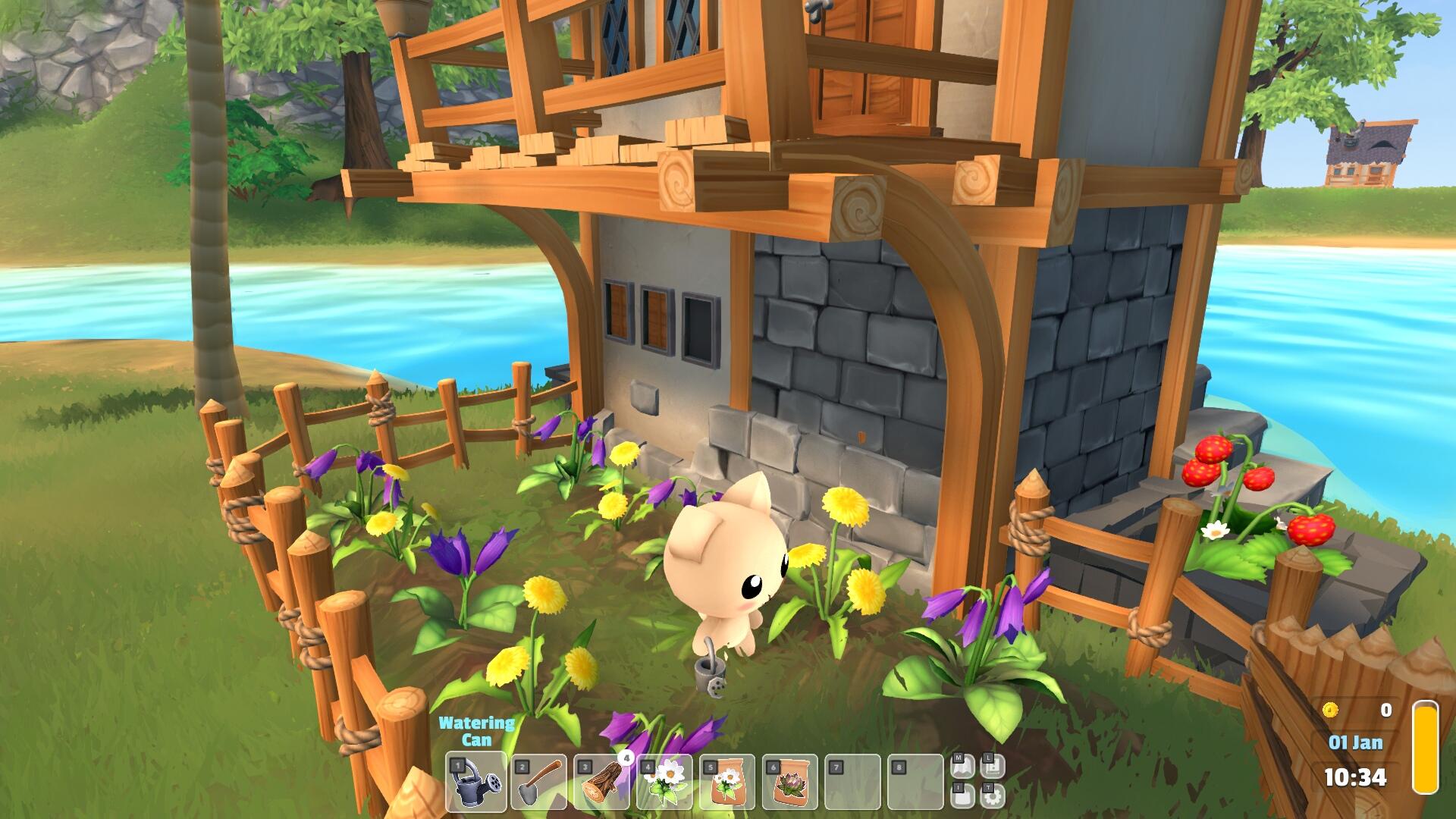 gardenpaws84.jpg