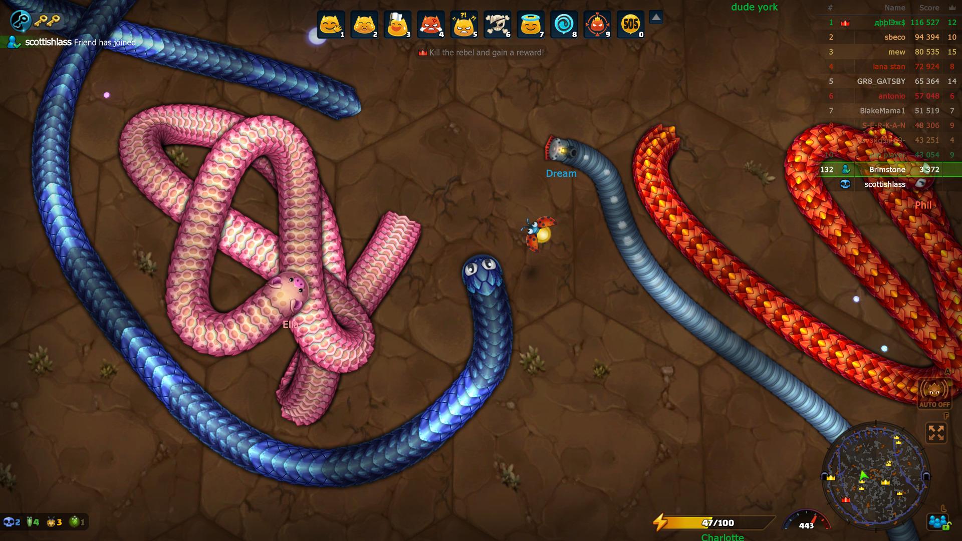 snake-0.jpg