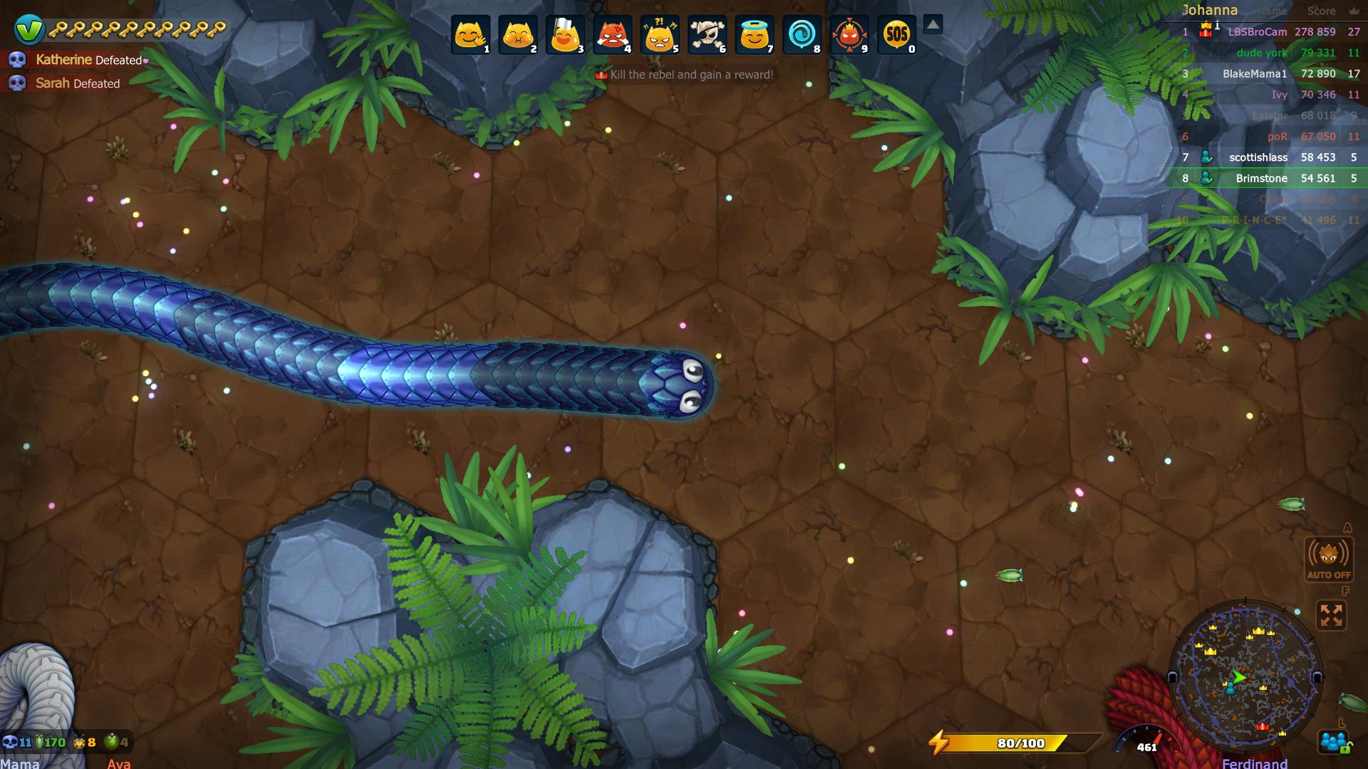 snake-10.jpg
