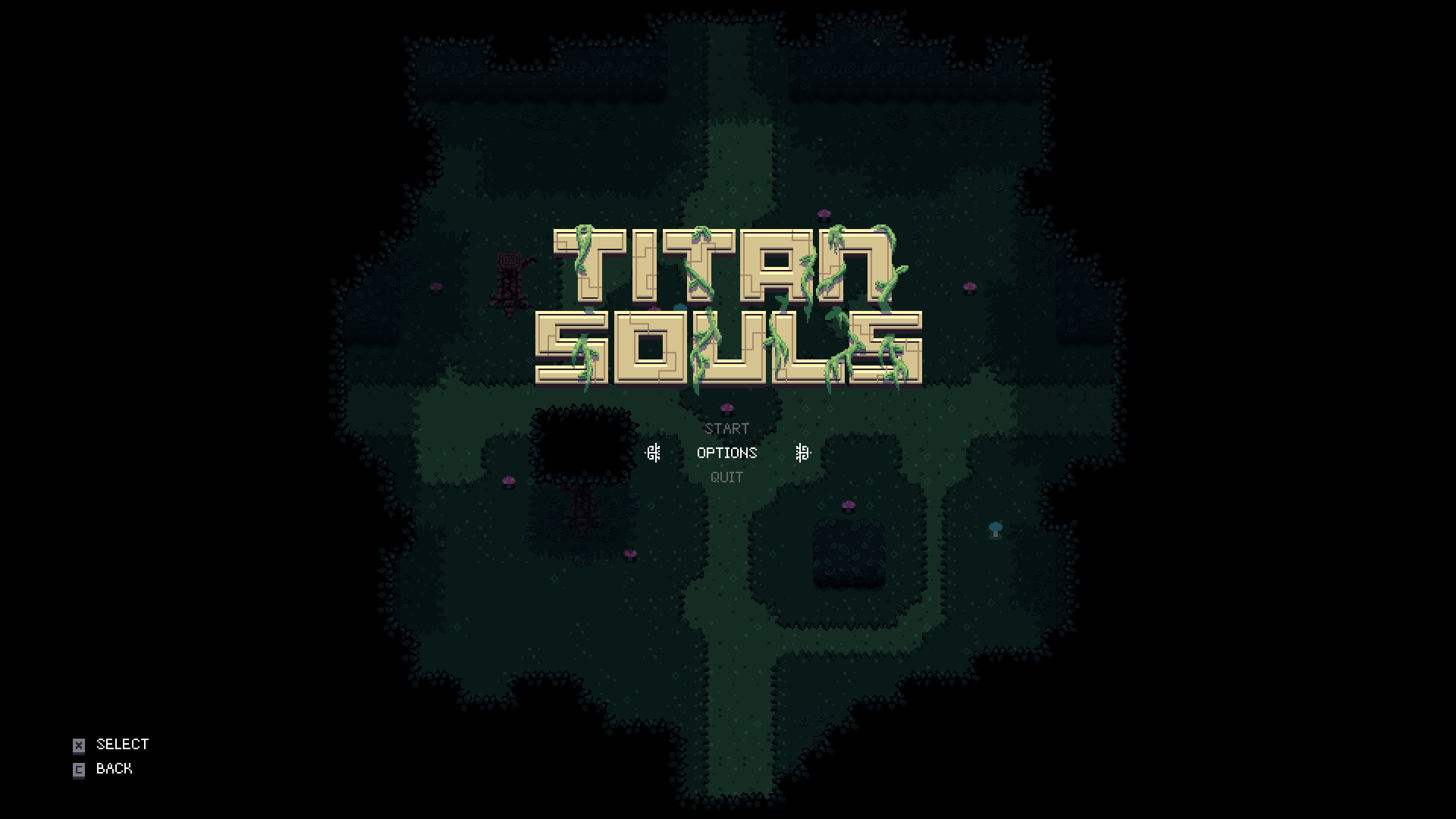 titansouls40.png